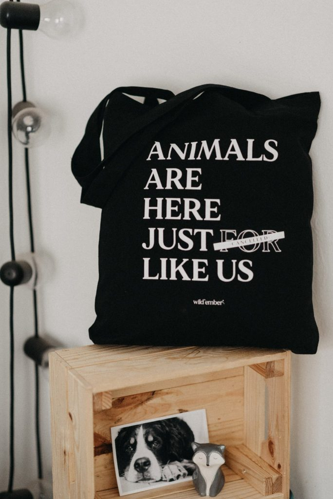 JUST LIKE US TOTE BAG Wildemberworld